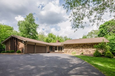 53 Bluff Road, Trout Valley, IL 60013 - #: 09972095