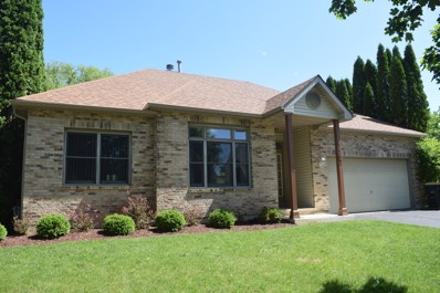 1167 Edgewater Lane, Antioch, IL 60002 - MLS#: 09972299