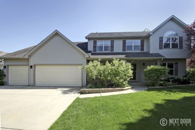 224 Willowwood Drive, Oswego, IL 60543 - MLS#: 09972322