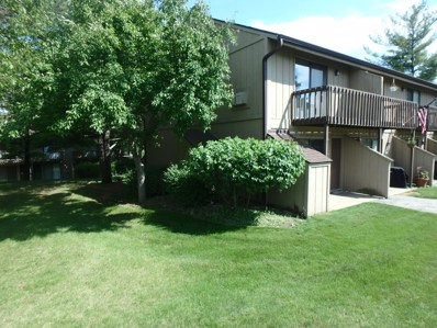 60 ASPEN COLONY UNIT 9, Fox Lake, IL 60020 - MLS#: 09972330