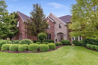 24716 Blue Aster Lane, Lake Barrington, IL 60010 - MLS#: 09972642