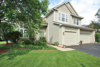 383 Shadow Creek Lane, Riverwoods, IL 60015 - #: 09972658