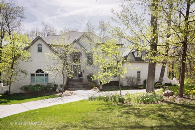 1820 Carrington Court, New Lenox, IL 60451 - MLS#: 09972791