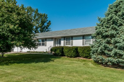 4461 N IL State Route 23, Leland, IL 60531 - #: 09972884