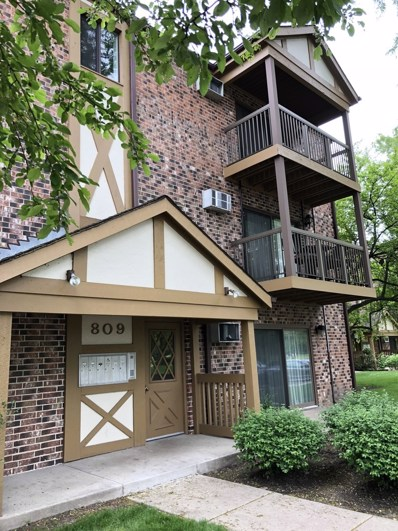 809 S Dwyer Avenue UNIT F, Arlington Heights, IL 60005 - MLS#: 09973507