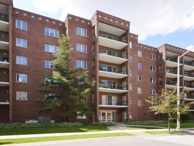 1685 Mill Street UNIT 204, Des Plaines, IL 60016 - #: 09974586