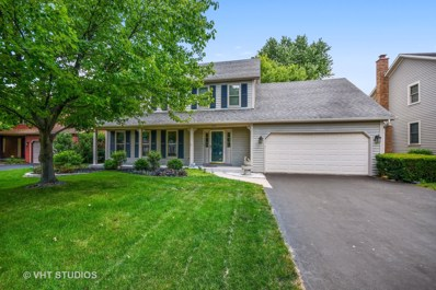 114 Green Valley Drive, Naperville, IL 60540 - #: 09974677