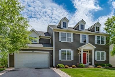 391 Fountain Avenue, Elgin, IL 60124 - #: 09974709