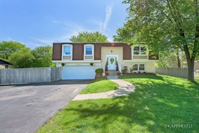 1113 N Smith Street, Palatine, IL 60067 - MLS#: 09974718
