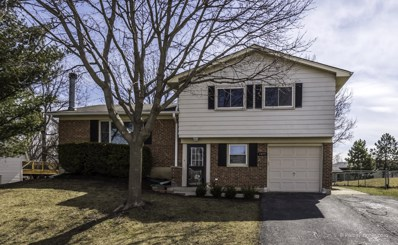 1415 Volkamer Trail, Elk Grove Village, IL 60007 - #: 09974832