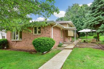 325 Pasadena Avenue, Crest Hill, IL 60403 - #: 09974982
