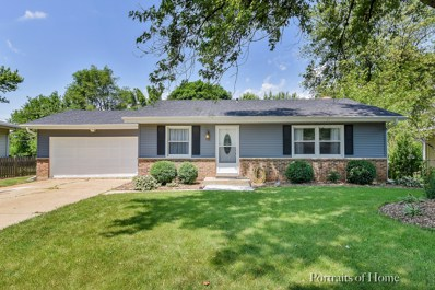 2233 Countryside Avenue, Montgomery, IL 60538 - MLS#: 09976537