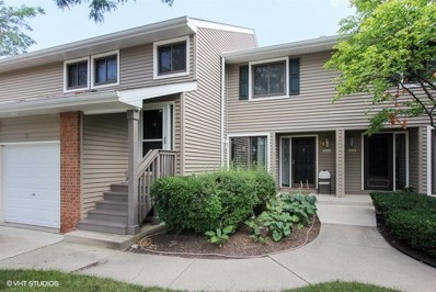 1095 Hidden Lake Drive, Buffalo Grove, IL 60089 - MLS#: 09976609