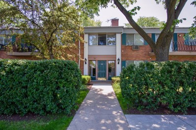 707 E Falcon Drive UNIT C211, Arlington Heights, IL 60005 - MLS#: 09976670