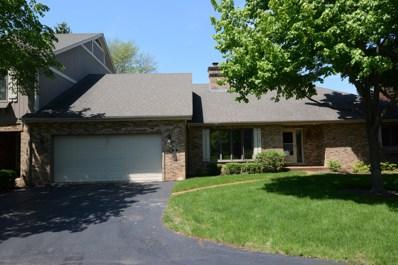 58 Castle Rock Lane, Bloomingdale, IL 60108 - #: 09976720