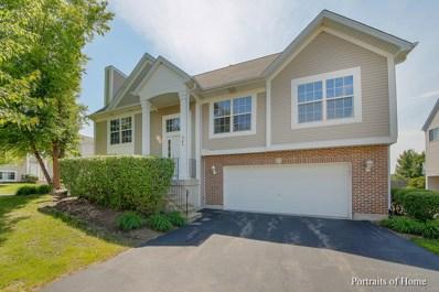 543 Silver Leaf Drive, Joliet, IL 60431 - MLS#: 09977120
