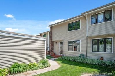 1080 Rainwood Drive, Aurora, IL 60506 - MLS#: 09977157