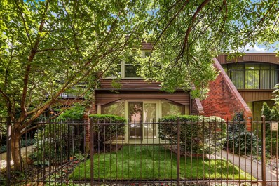 807 S Laflin Street, Chicago, IL 60607 - #: 09977249