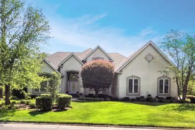 9301 Cascade Circle, Burr Ridge, IL 60527 - #: 09977558