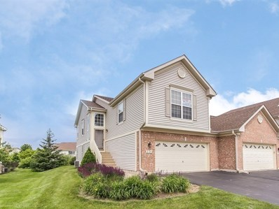 336 Emerald Lane, Algonquin, IL 60102 - MLS#: 09977580