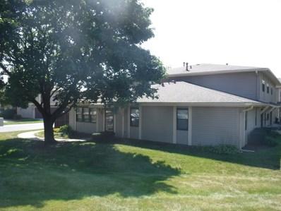 5725 Dutch Mill Court UNIT C, Hanover Park, IL 60133 - #: 09977706