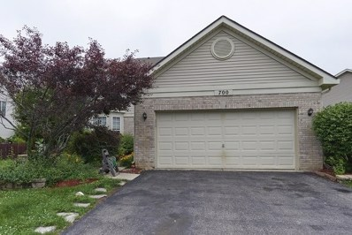 700 BLACKHAWK Lane, Bolingbrook, IL 60440 - #: 09977764