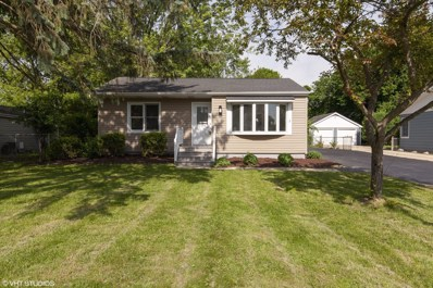 1111 Pine Street, Lake In The Hills, IL 60156 - #: 09977788