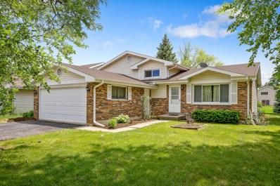1129 E Meadow Lake Drive, Palatine, IL 60074 - MLS#: 09977936