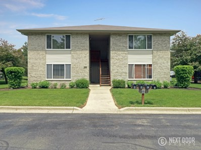 490 Westwood Court UNIT B, Crystal Lake, IL 60014 - #: 09978412