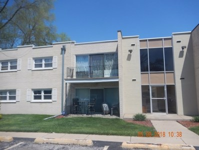 18310 Cherry Creek Drive UNIT 7, Homewood, IL 60430 - MLS#: 09978503