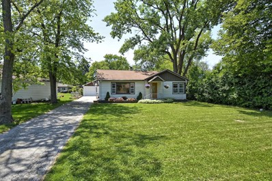 207 E Rust Trail, Willow Springs, IL 60480 - #: 09978514