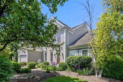 23290 N Chesapeake Drive, Kildeer, IL 60047 - #: 09978989