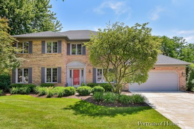 832 Buttonwood Circle, Naperville, IL 60540 - #: 09979061
