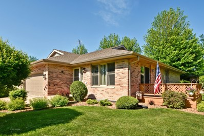 807 Archer Lane, Elwood, IL 60421 - #: 09979330
