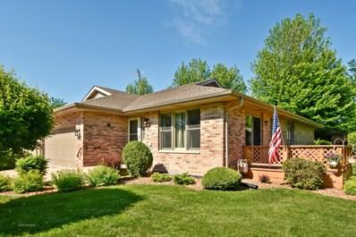 807 Archer Lane, Elwood, IL 60421 - #: 09979330
