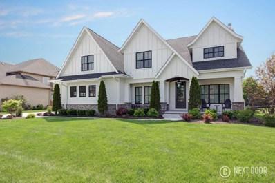 25732 W Sunnymere Drive, Plainfield, IL 60585 - MLS#: 09979434