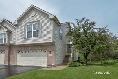 300 Lake Gillilan Way UNIT 300, Algonquin, IL 60102 - #: 09979616