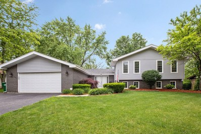 13920 S CHEROKEE Trail, Homer Glen, IL 60491 - MLS#: 09980525