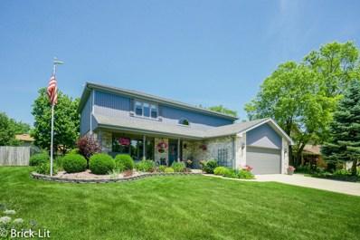 11104 Granite Drive, Mokena, IL 60448 - MLS#: 09980905