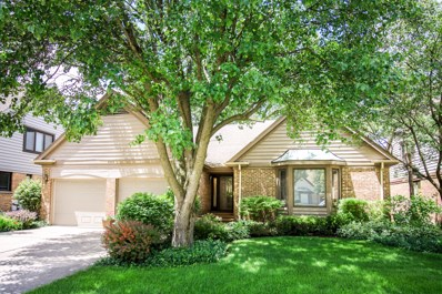 890 VILLAS Court, Highland Park, IL 60035 - MLS#: 09981629