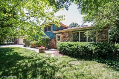 818 Pleasant Avenue, Glen Ellyn, IL 60137 - #: 09981678