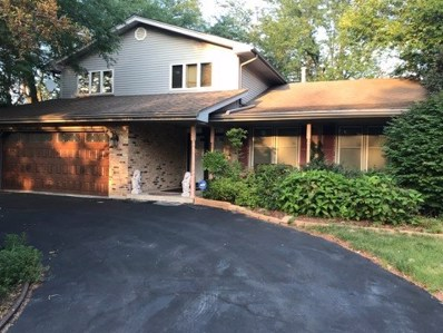 20935 London Drive, Olympia Fields, IL 60461 - MLS#: 09982005