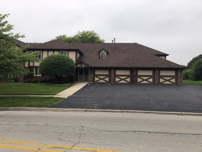 15500 Orlan Brook Drive UNIT 221, Orland Park, IL 60462 - MLS#: 09982512