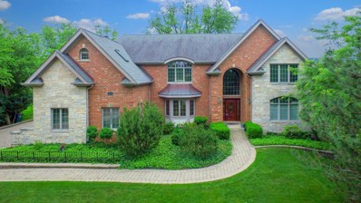 216 W 59th Street, Burr Ridge, IL 60527 - #: 09982841