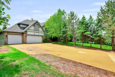 13505 Arctic Lane, Lemont, IL 60439 - MLS#: 09982945