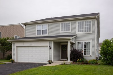 7713 Boxwood Lane, Plainfield, IL 60586 - MLS#: 09982974