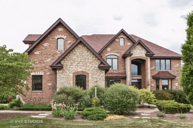 22586 Nature Creek Circle, Frankfort, IL 60423 - MLS#: 09983068