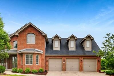 11315 Laura Lane, Frankfort, IL 60423 - MLS#: 09983247