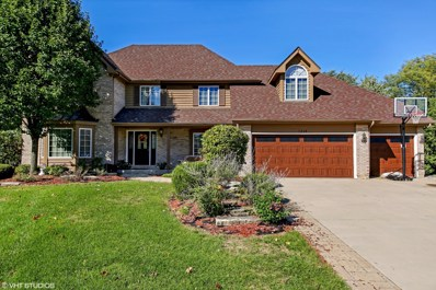 1248 Richfield Court, Woodridge, IL 60517 - MLS#: 09983248