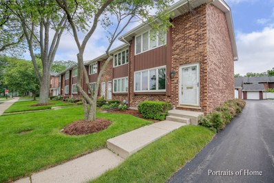 119 W Seminary Avenue, Wheaton, IL 60187 - MLS#: 09983557